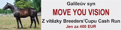 moveyourvision2