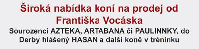 vocasek