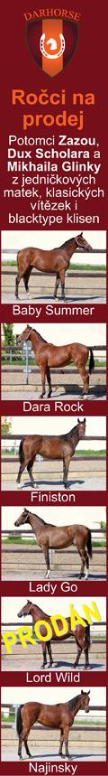 Darhorse - ročci 2021
