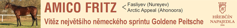 amico fritz 2019 sprint