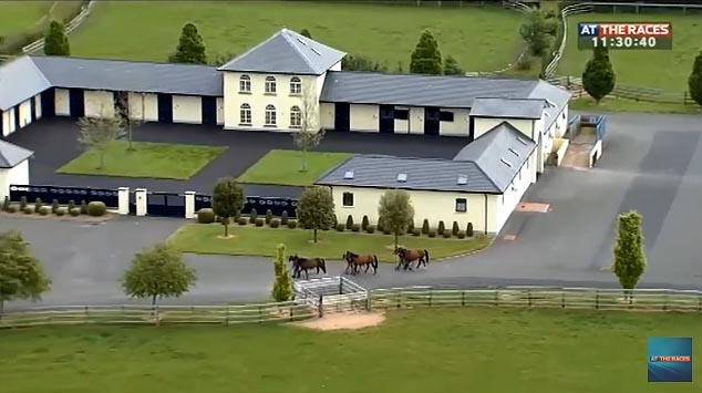 coolmore3