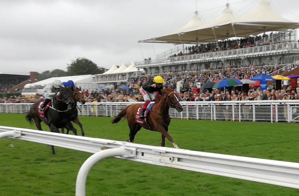 Goodwood Cup 2019